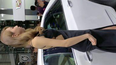 Sexy,charming,beautiful legs,high heels,beautiful women,photos,selfies,Dancing, good figure